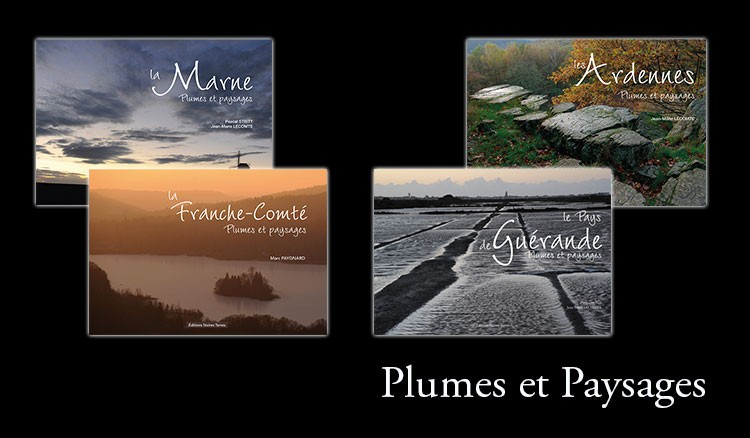 Collection Plumes et Paysages